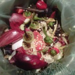 Kitchen Compost