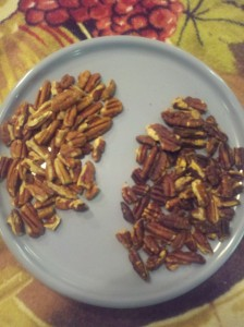 Pecans plain and toasted