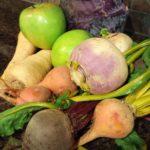 Winter Vegetables Brighten Up Meals